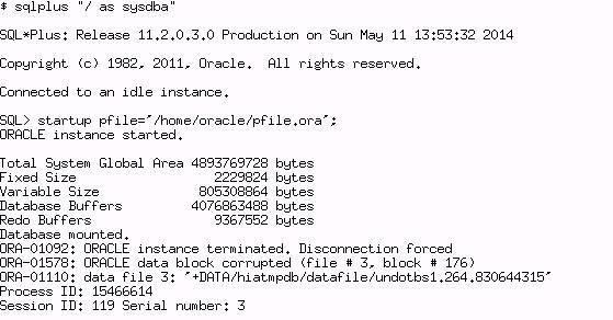 11203 RAC(asm)恢复一例插图