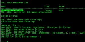 一个55TB的Oracle RAC (ASM)恢复case插图